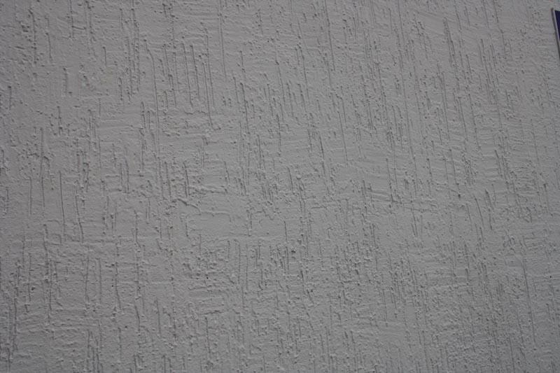 Lion Texture Plaster Lion Building Solution रिश्ता